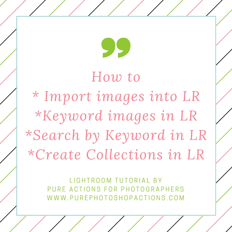 How to Import into Lightroom and more