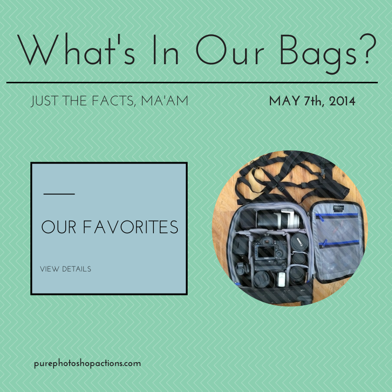 What's In Our Bags?
